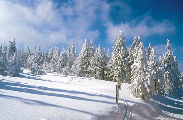 Winter am Brocken